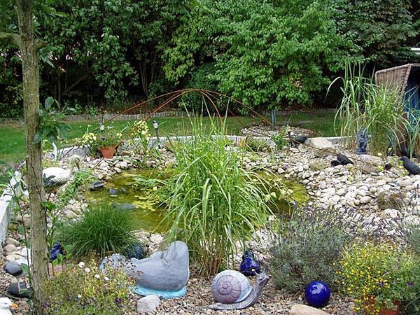 Teichbau in friedeburg naturteich schwimmteich und bachl ufe for Naturteich zum schwimmen